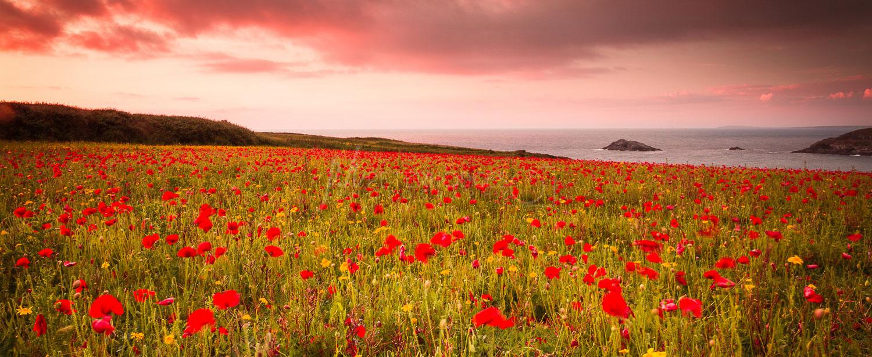 Cornwall Seacape Landscape Photography Polly Joke, Nr Crantock